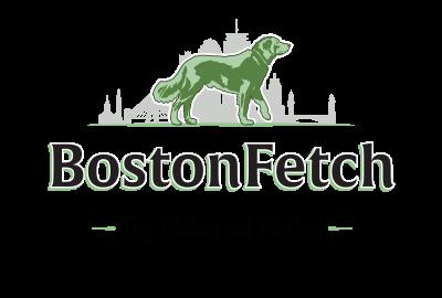 Boston Fetch